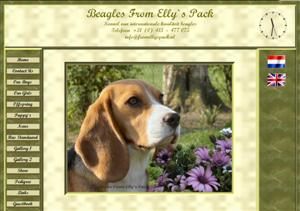 Beagle - Beagles.nl : kennel | Fokker From Elly`s Pack